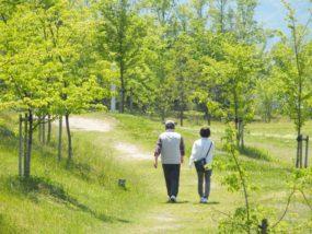 健康と高齢化